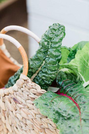 Consulta de nutrición integrativa online